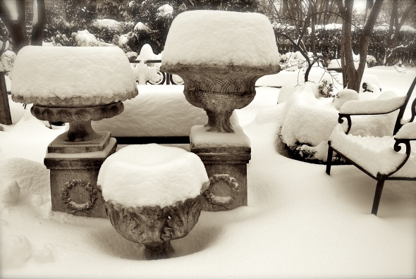Urns in snow - January 30, 2010