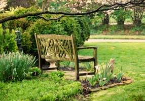 Chippendale bench with Garden Cat
