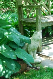 Sitting Cat in the Front Garden