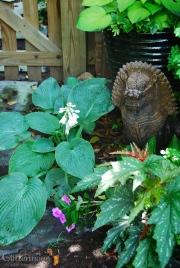 Mr Foofy, guardian of the Black Garden