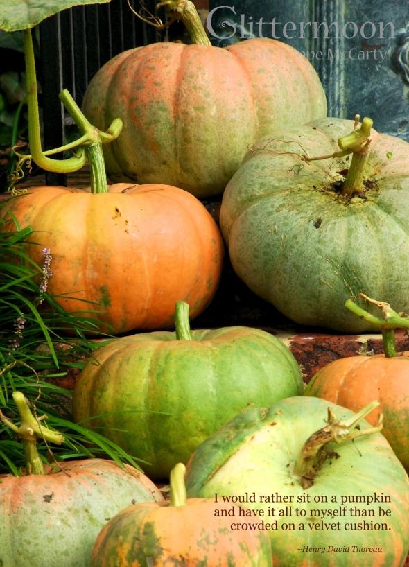 Sit on a Pumpkin