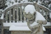 Vinnie's Gentle Snow