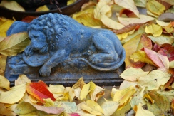 The Lion in the Leaves