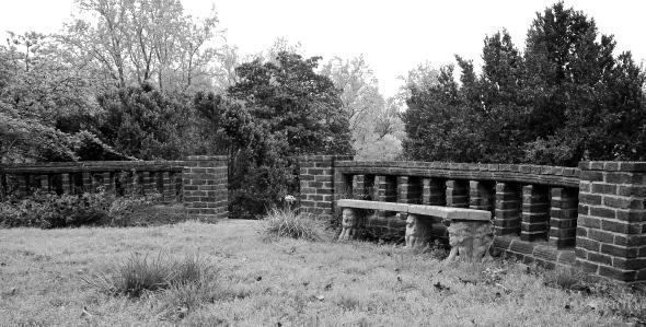 Photographed in the garden at Virginia House, Richmond, VA