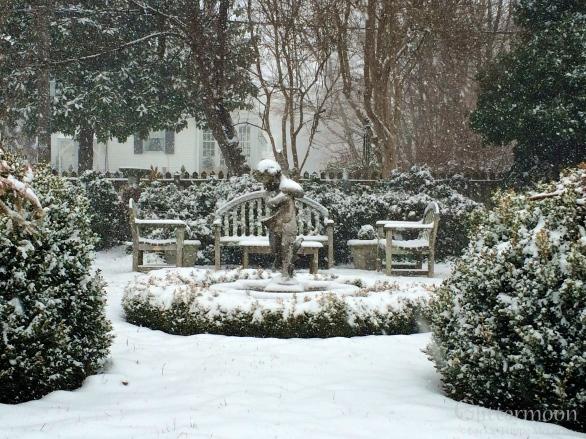Vinnie's Garden