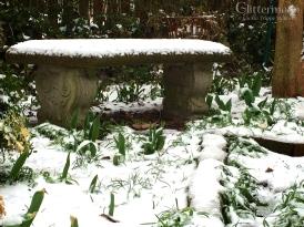 Snow, March 2014