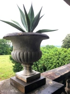 Urn with a view