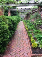 boxwood walk